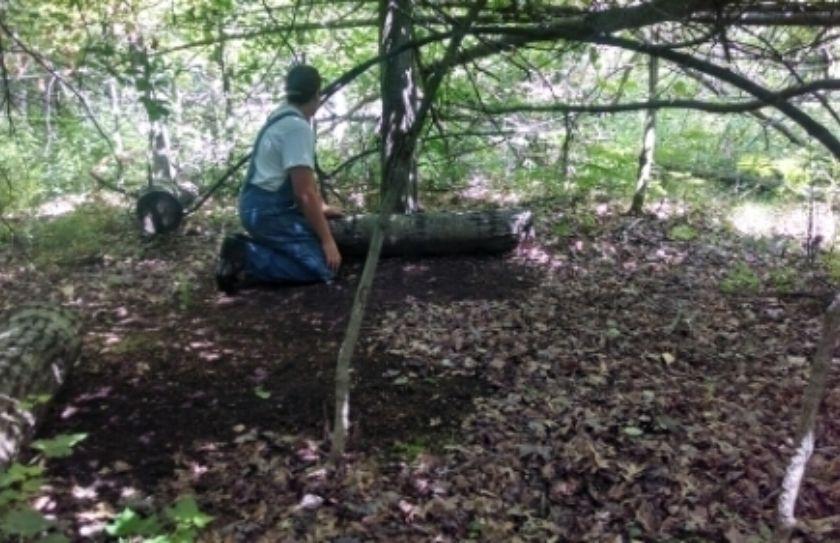whitetail habitat management myths