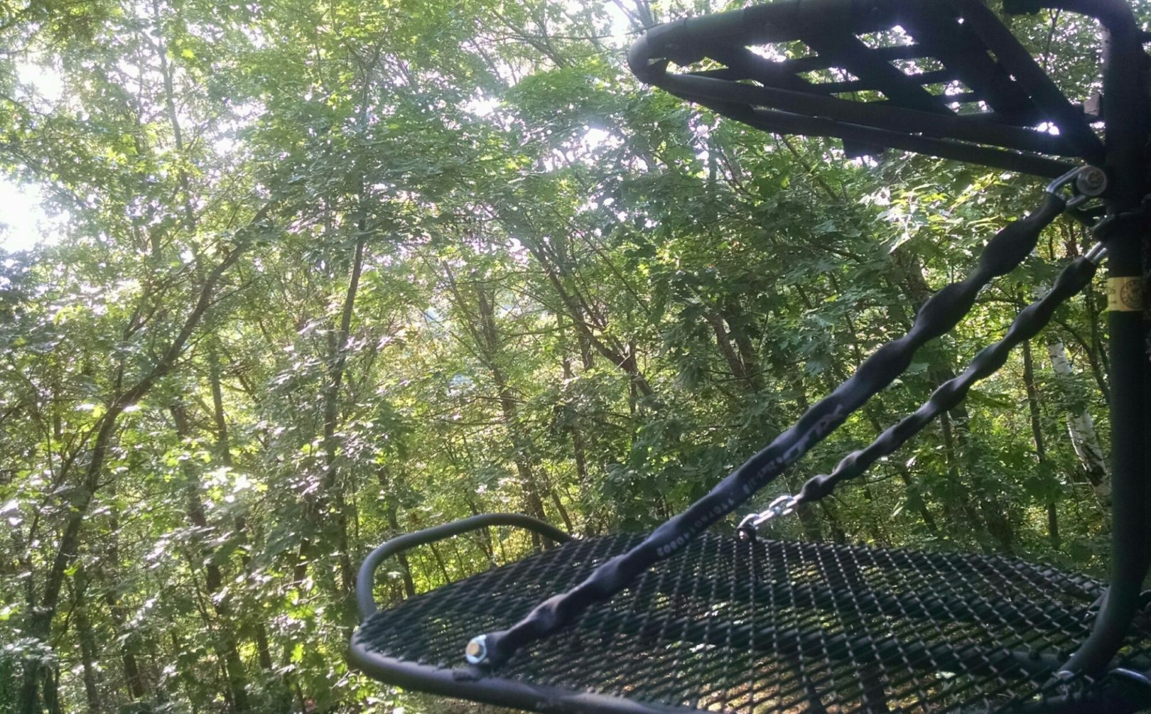 treestand hang