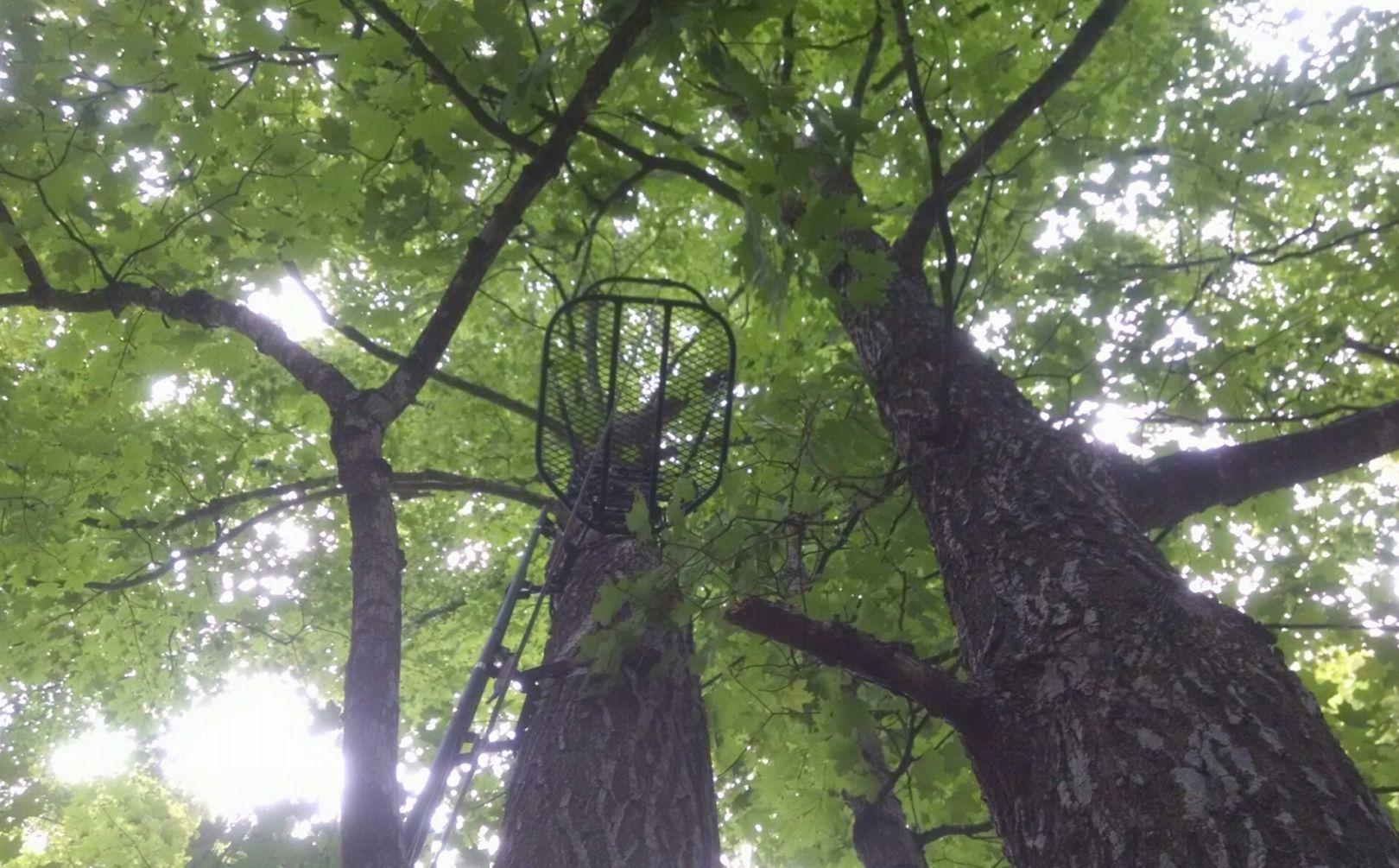 treestand comfort