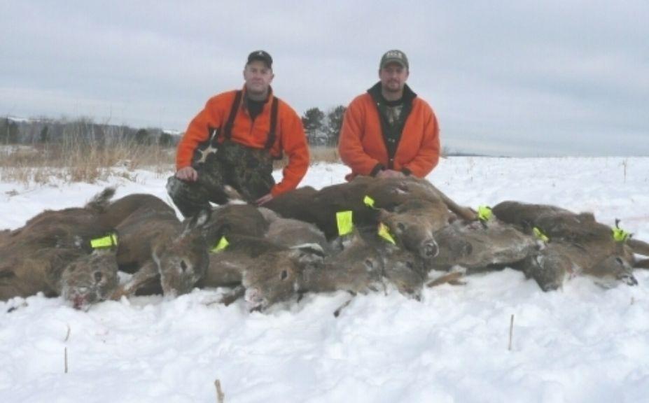 doe hunting herd success