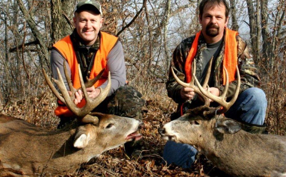 low impact deer recovery