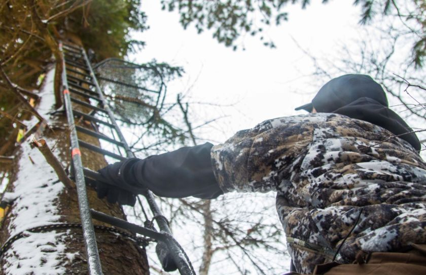 treestand tactics for whitetails