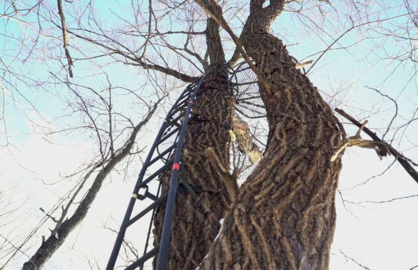 high pressure treestand setups