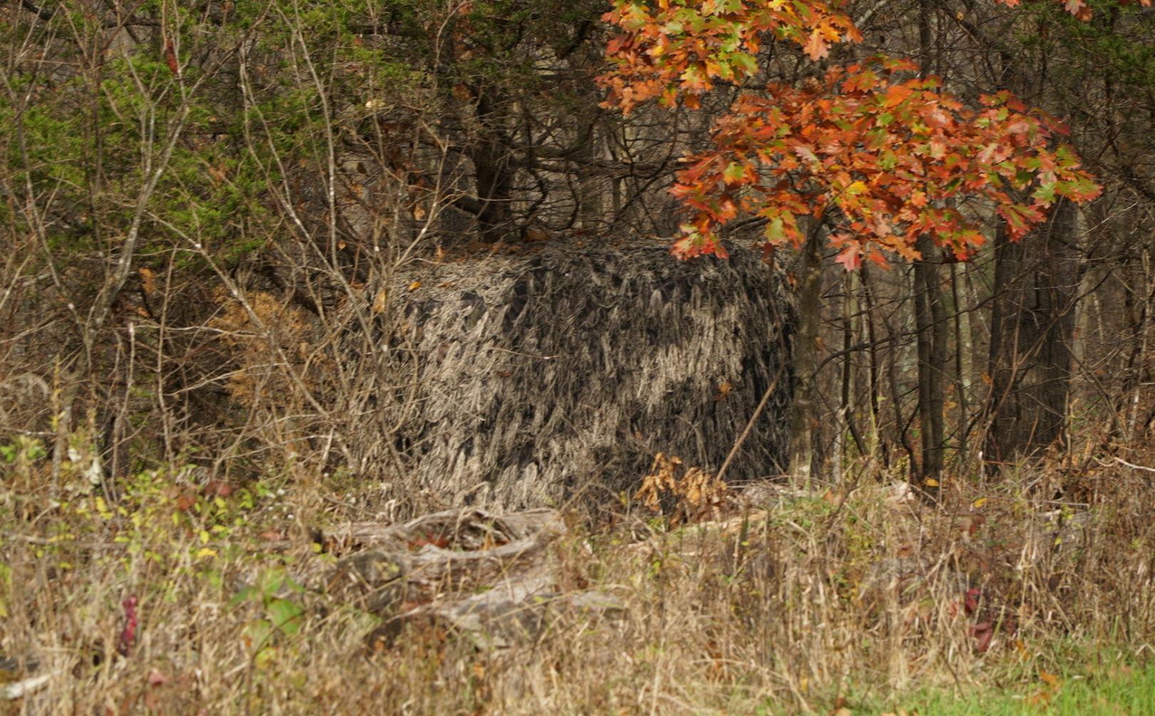 hide deer blind