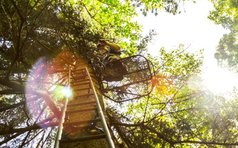 treestand shooting tips