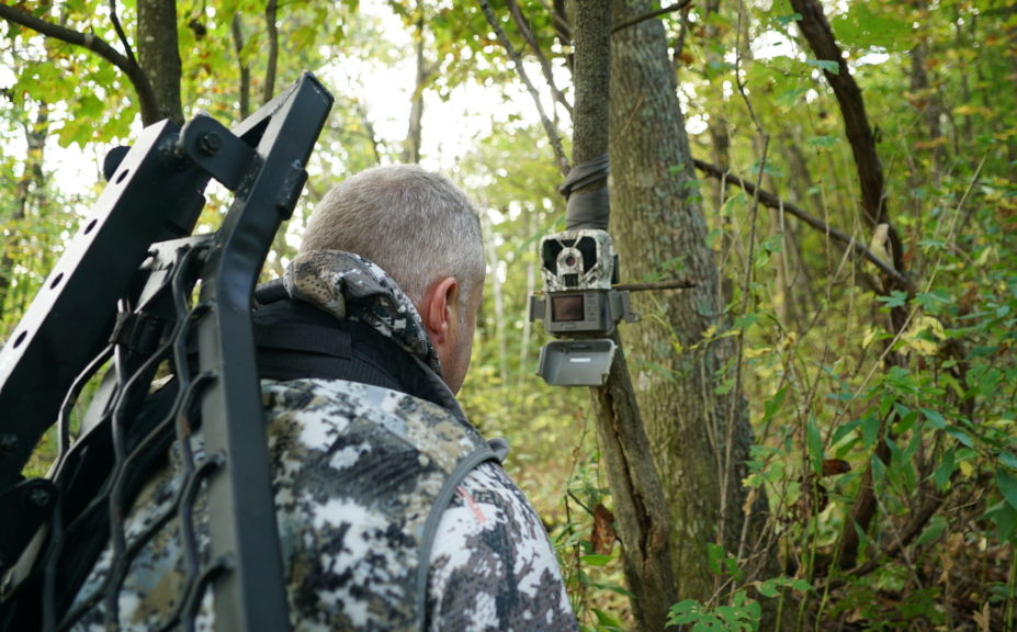 september bowhunting strategies
