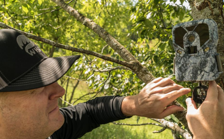 trail cam strategies